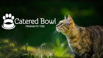 Catered Bowl